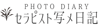 PHOTO DIARY~セラピスト写メ日記